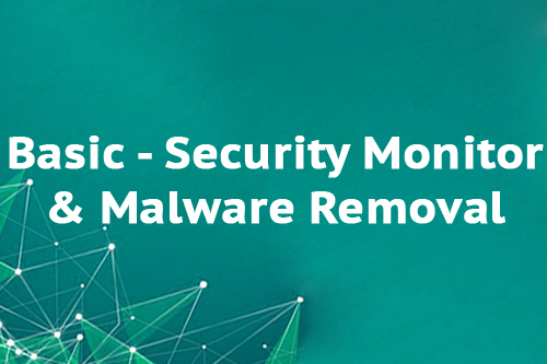 Basic - Security Monitor & Malware Removal