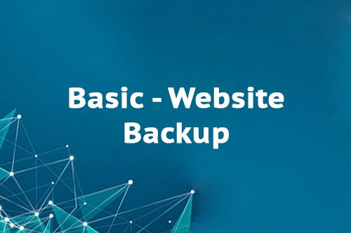 Basic - Website Backup