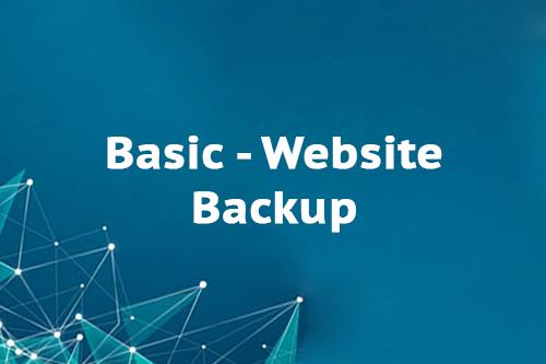 Basic - Website Backup