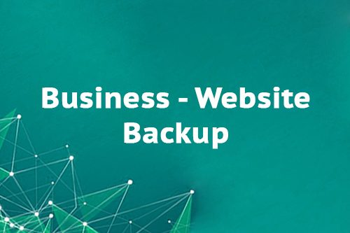 Business - Website Backup
