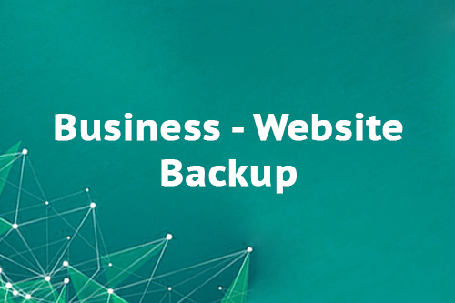 Business - Website Backup