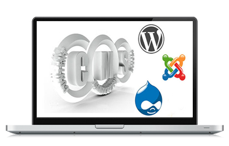 Wordpress | Joomla | Drupal - CMS Website