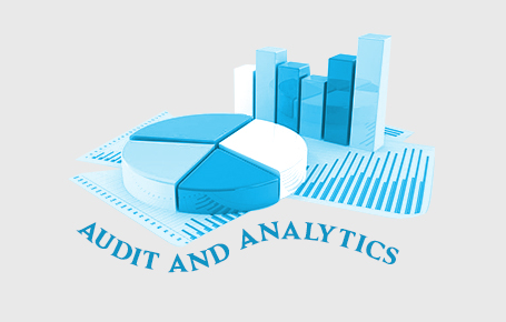 Audit & Analytics