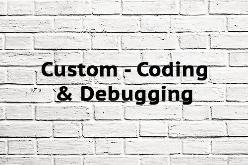 Custom Coding & Debugging