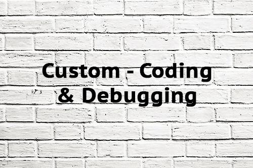 Custom Coding & Debugging