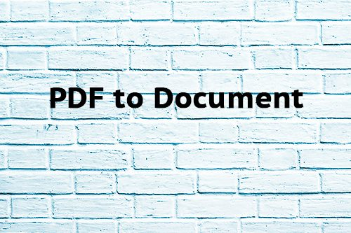 PDF to Document