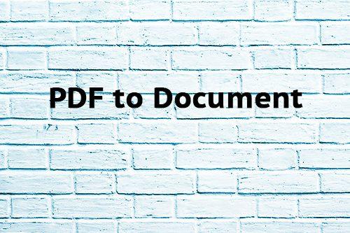 PDF to Document