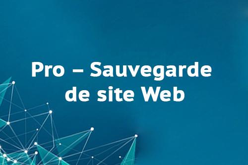 Pro – Sauvegarde de site Web